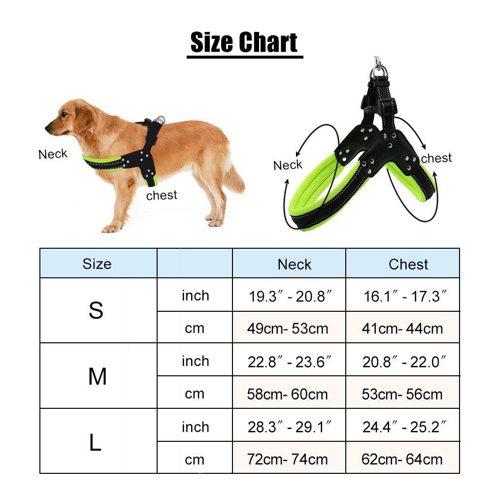 STXMALL Hundegeschirr Mit Hundeleine Hunde Geschirr Set Einstellbare Reflektierendes Langlebiges Nylon Verstellbares Outdoor Spazierengehen Gassi Gehen Laufen Grün M