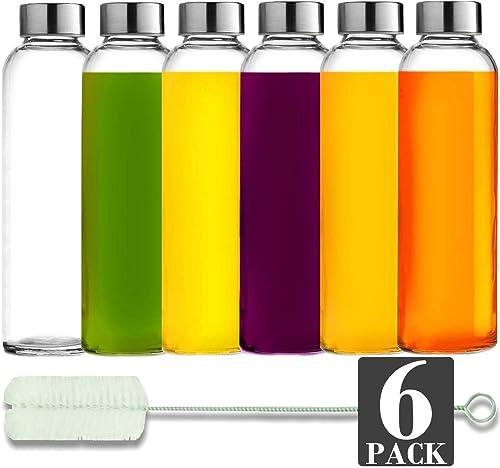 Brieftons Glass Water Bottles