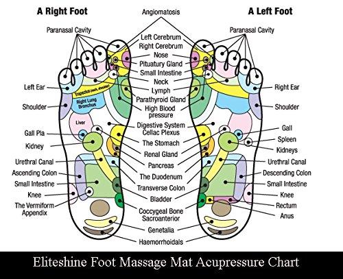 EliteShine Rock Reflexology Foot Massage Yoga Mat Health Care Christmas Birthday Gift by EliteShine (Image #2)