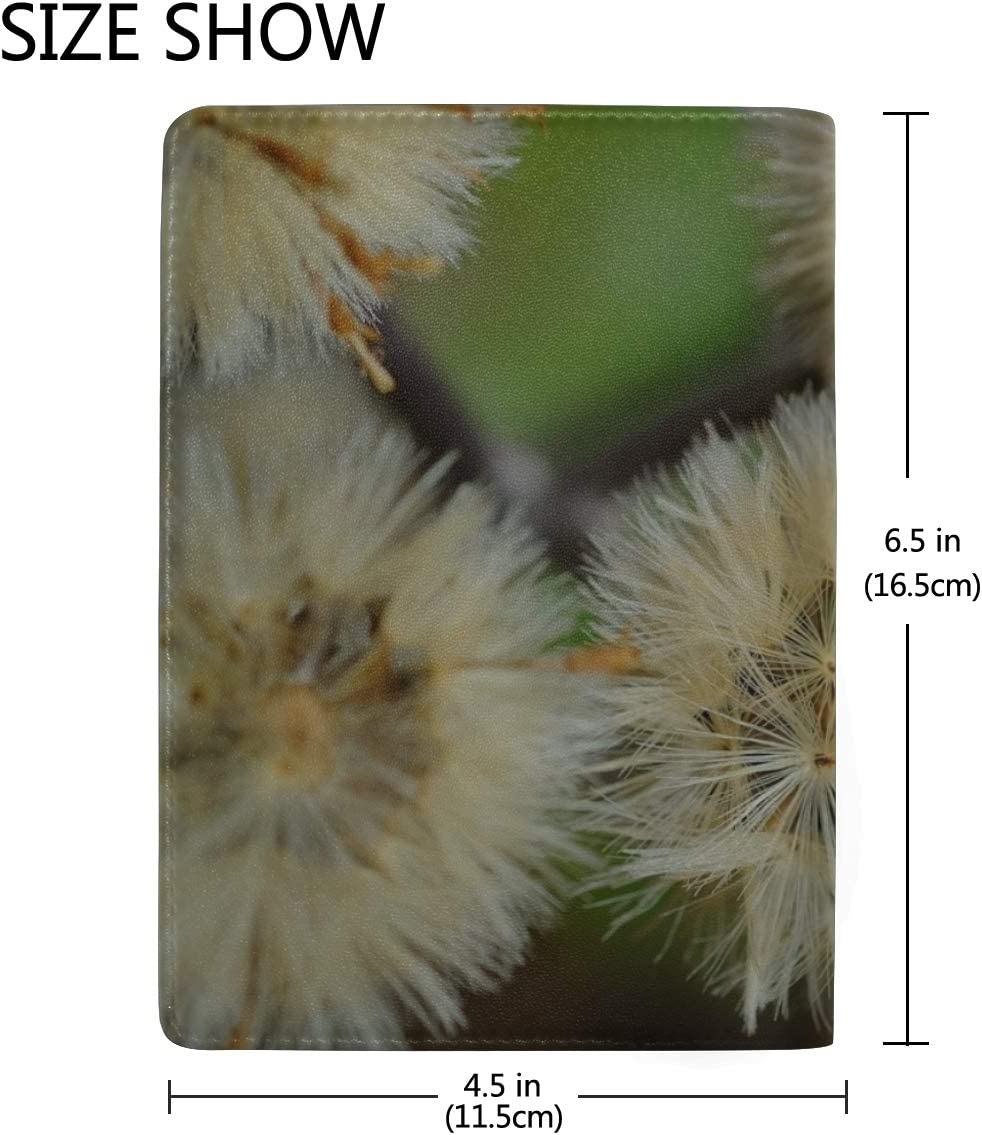 Maxm Dandelions Flowers Feathers Bright Leather Passport Holder Cover Case Travel One Pocket