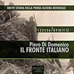 Breve Storia della Prima Guerra Mondiale, Vol. 7 [Short History of WWI, Vol. 7]: Il Fronte Italiano [the Italian front] | Piero Di Domenico
