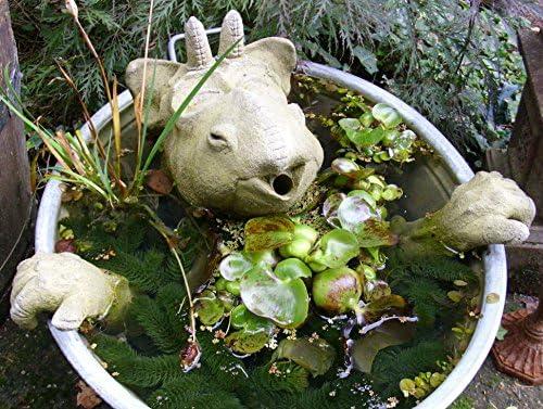Gárgola Dragón Robi, parte de agua para estanque, estanque, Jardín Decoración: Amazon.es: Jardín