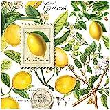 Michel Design Works 20-Count 3-Ply Paper Cocktail Napkins, Lemon Basil