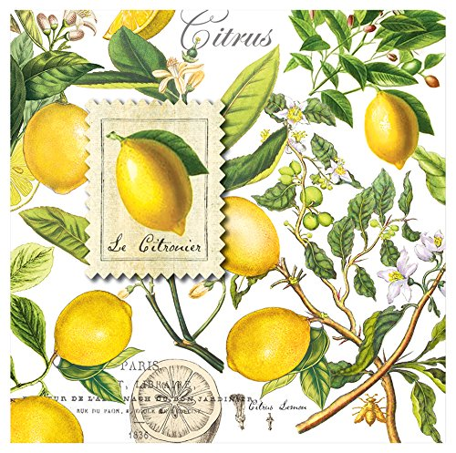 Michel Design Works 20-Count 3-Ply Paper Cocktail Napkins, Lemon Basil