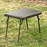 Lifetime 280488 Compact Folding Low Side Table