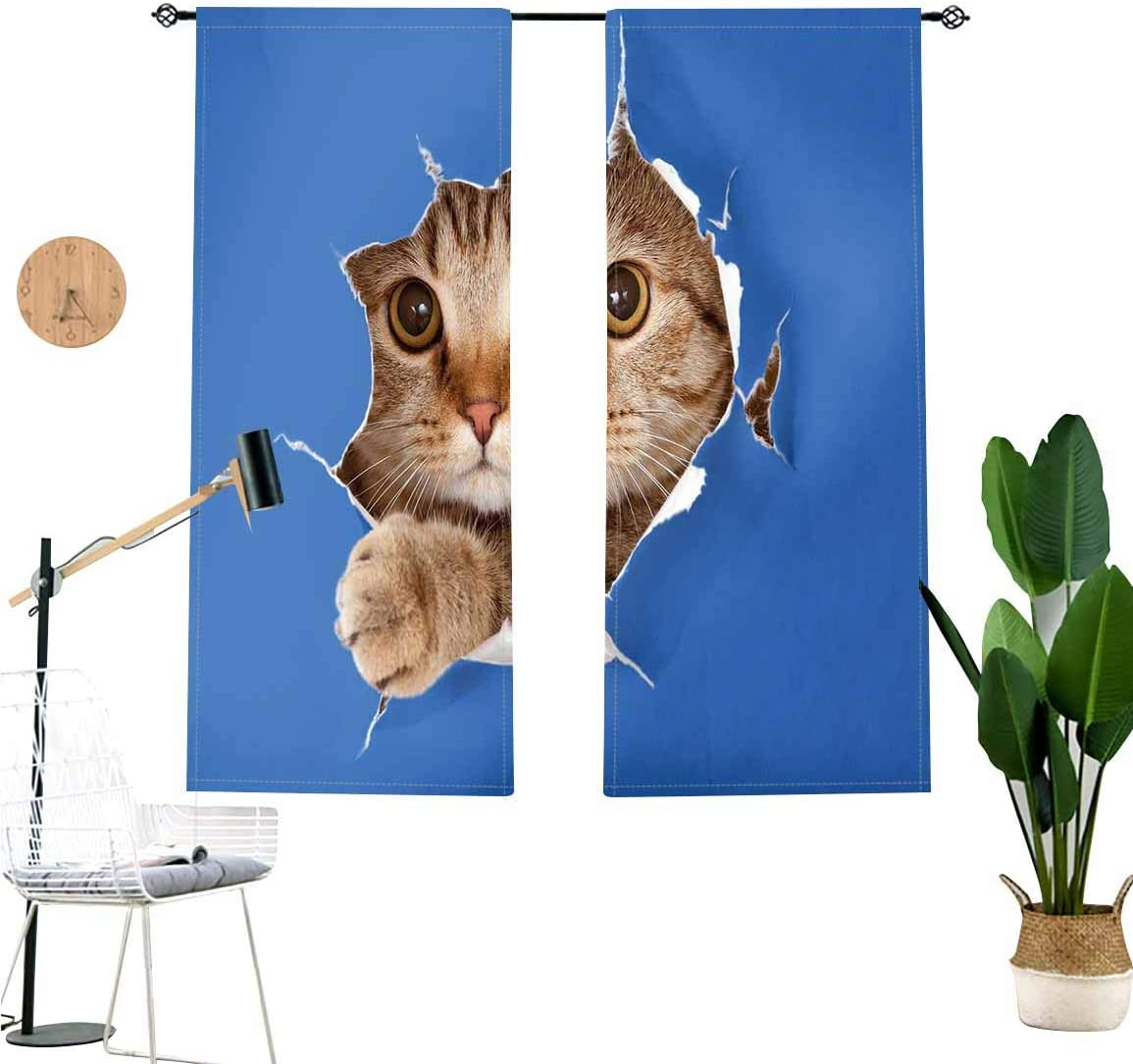 Animal Window Drapes,Cute Kitten in Paper Hole Paws Playful Scottish Cat Adorable Pet Room Decor Window Treatment 2 Panel Set,W36 x L24 Each Panel