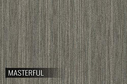 IncStores Shaw Intellect Carpet Tile 24