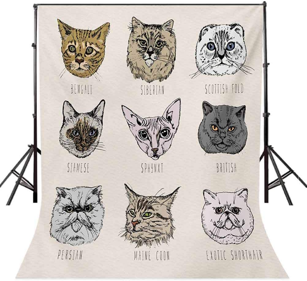 10x15 FT Photo Backdrops,Different Breeds Cat Portraits in Doodle Style Cute and Funny Animals Kittens Background for Kid Baby Boy Girl Artistic Portrait Photo Shoot Studio Props Video Drape Vinyl