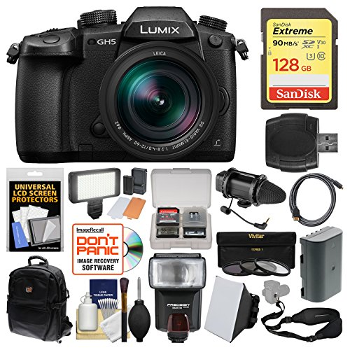 Panasonic Lumix DC-GH5 Wi-Fi 4K Digital Camera & 12-60mm f/2.8-4.0 Lens with 128GB Card + Backpack + Flash + Video Light + Battery + 3 Filters Kit