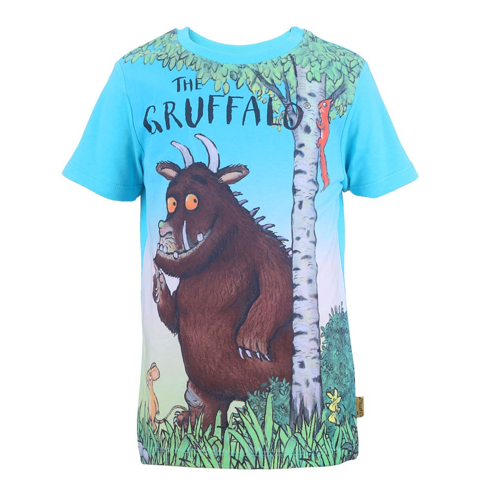 Gruffalo Ragazzi Maglietta, T-Shirt, Turchese
