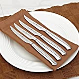 J.A.HENCKELS INTERNATIONAL Premium 4 Piece Stainless Steel Steak Knife set