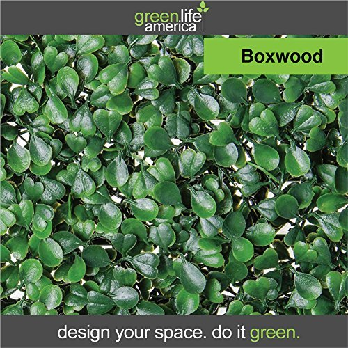 GreenLife America Pack of 12 Artificial Boxwood Mat Panels, 20'' L x 20'' W by GreenLife America