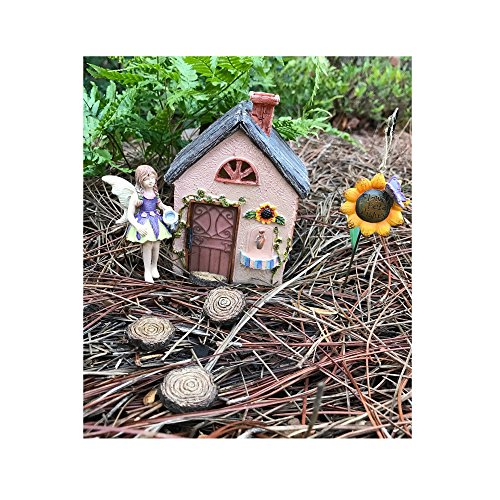 Ant Miniatures (Miniature Fairy Garden Sunflower Workshop and 7 piece accessories starter kit (bundle) by WFG. Create Your Own Magical Fairy Garden.)