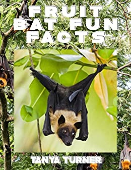 Childrens book about a fruit bat