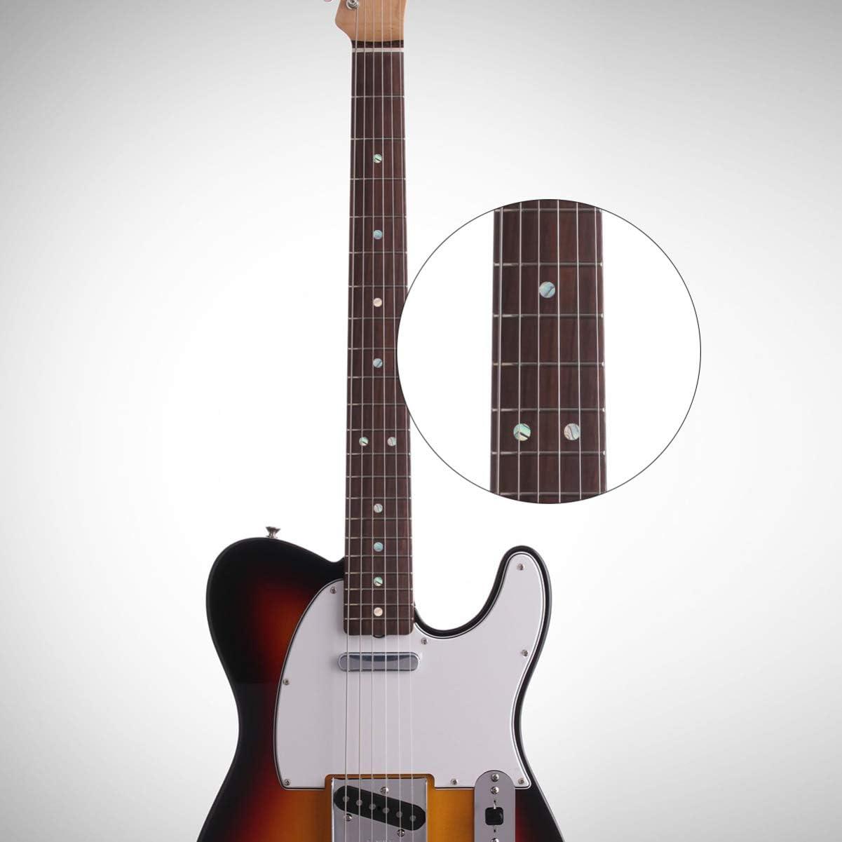 EXCEART 20 Piezas Diapas/ón Puntos Naturales Blanco N/ácar Concha Accesorios de Guitarra de Punto para Guitarra Bajo Ukelele Banjo