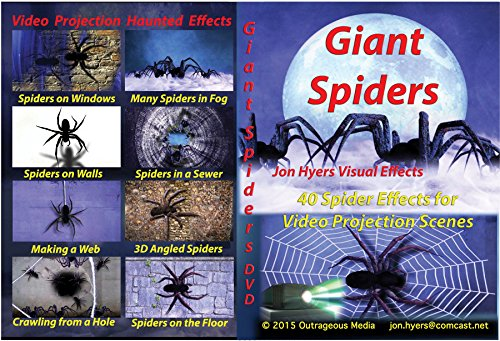 Easy Ideas For Halloween Decorating (DVD Giant Spiders Crawling Party)