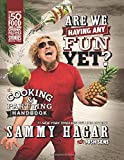 Are We Having Any Fun Yet?: The Cooking & Partying Handbook