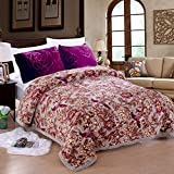 JML Plush Raschel Blanket, Korean Mink Blankets - Silky Soft, 2 Ply Printed Heavy Fleece Blanket (King Size 85' x 93', Grey/Birds & Flowers)