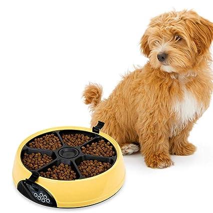 LBAFS Dispensador AutomáTico De Comida para Gatos - 6 Comidas LCD Feeder Food Bowl para Perros con Temporizador Y Grabadora De Voz,Pink: Amazon.es: Jardín
