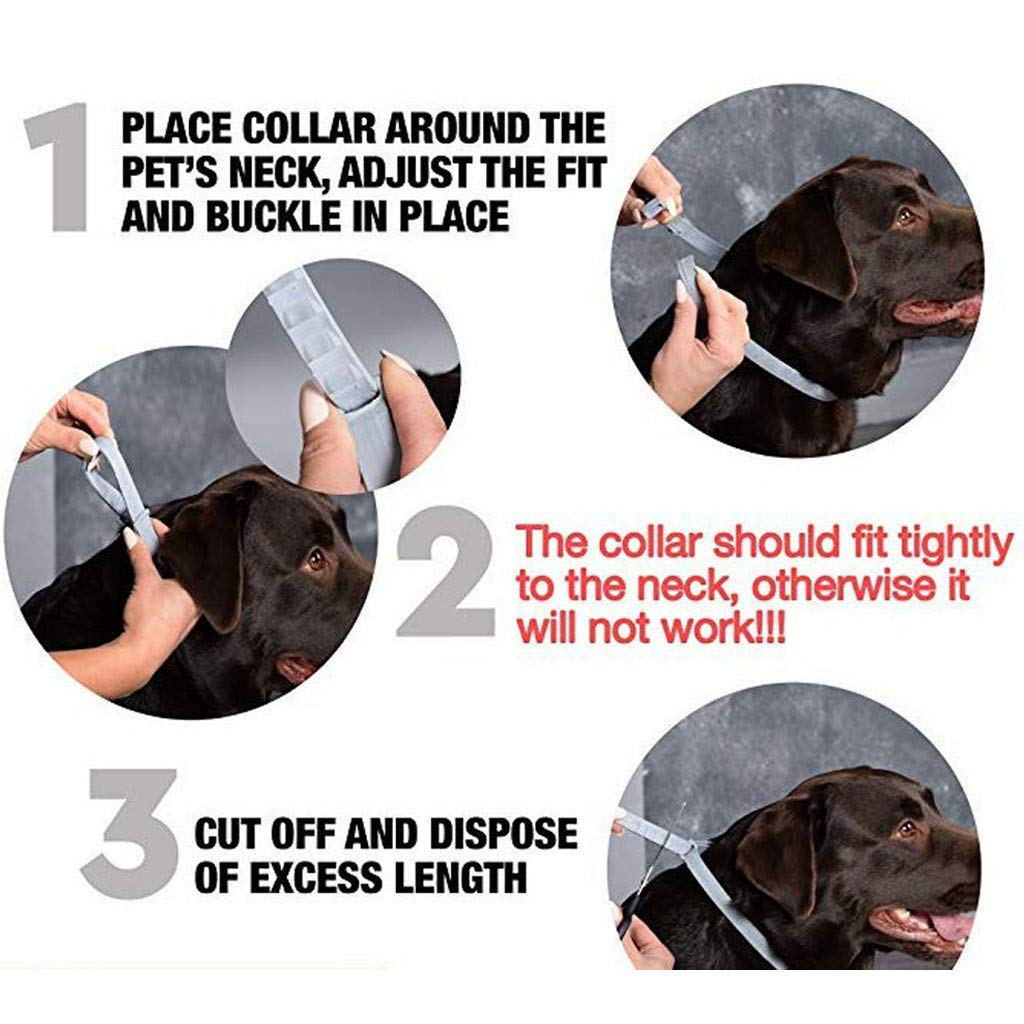 Dog Flea and Tick Collars Natural Flea Prevention Collar for Cats One Size Fits All Adjustable (A) by Buolo-Shower (Image #7)