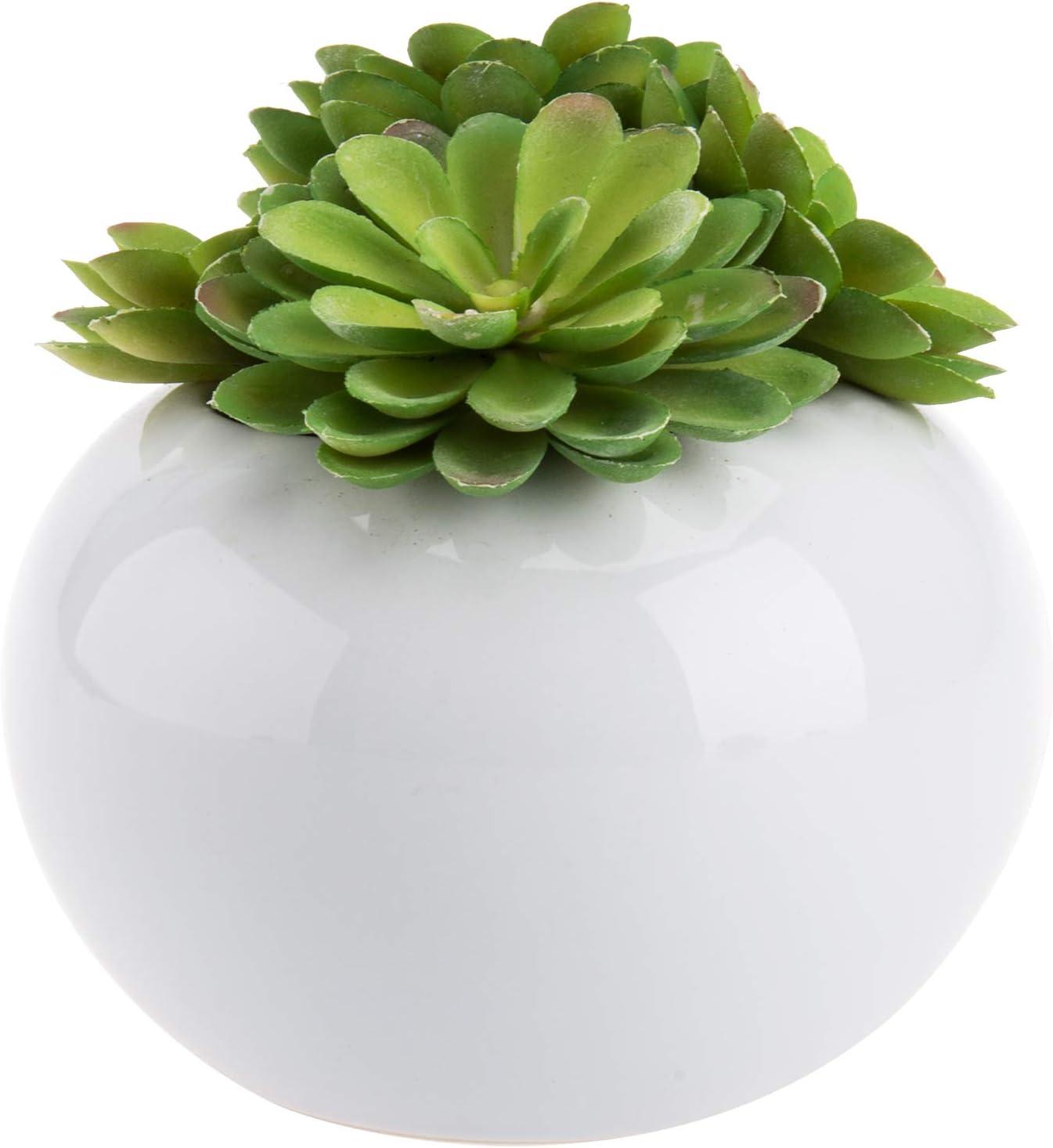 MyGift Decorative Modern Potted Green Artificial Succulent Plants w/Glazed White Ceramic Flower Pot