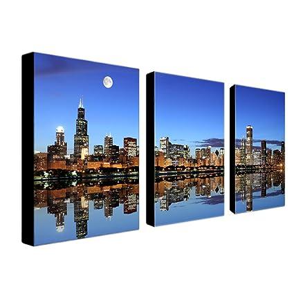Amazon.com: Trademark Fine Art Chicago IL by Master\'s Art Canvas ...