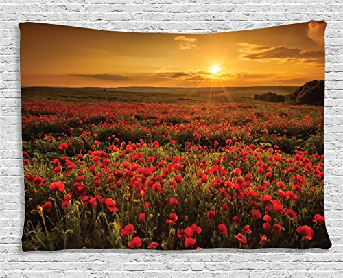 (Ambesonne Flower Tapestry, Poppy Field at Sunset Sun Beams Meadow Cloudscape Wildflower Scene, Wall Hanging for Bedroom Living Room Dorm, 80 W X 60 L Inches, Red Orange)