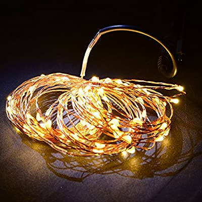 Fairy Lights 33ft Copper Wire Lights, 100 LEDs Starry String Lights, 10m Warm White Copper LED Strings, Dimmable Starry LED Lights, Decor Rope Lights with Plug