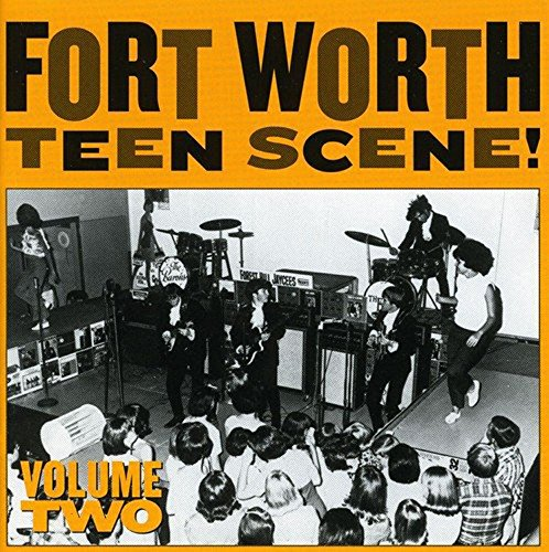 (Fort Worth Teen Scene, Vol. 2 { Various Artists })