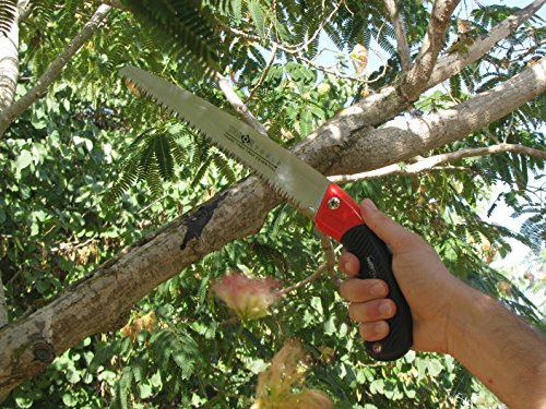 TABOR TOOLS TTS31 Pruning Saw with Sheath For Trimming Tree Branches & Clearing Forest Trails, 8'' Straight Steel Turbocut Pull-Action Blade, Your Next Professional Pruning Tool! by TABOR TOOLS (Image #2)