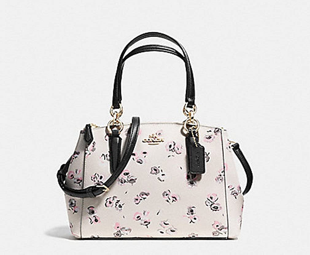 0602cfd96f Coach Mini Christie Carryall Floral Print Satchel Bag Handbag Purse - Chalk  Multi