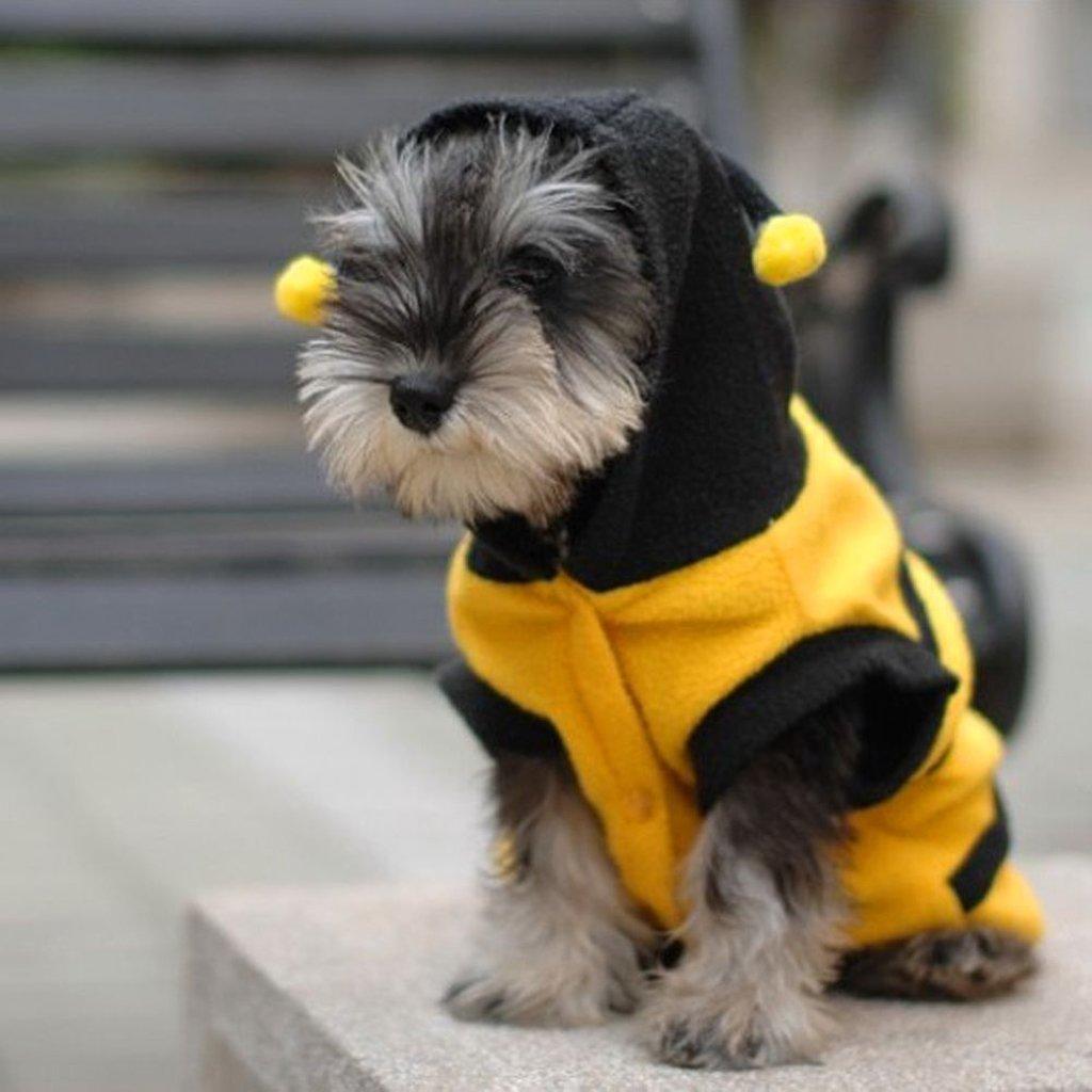 /S Sudadera con Capucha Perro Gato Parche Vestido de Cachorro Perros Chaqueta Ropa para Perros Abeja Disfraz Outfit/