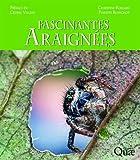 Fascinantes araignées: Préface de Cédric Villani