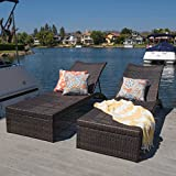 Lenci Brown Chaise Lounge (Set of 2)