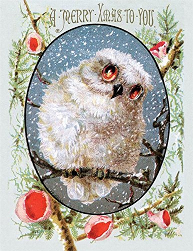Victorian Trading Co Merry Christmas Owl Greeting Cards (...