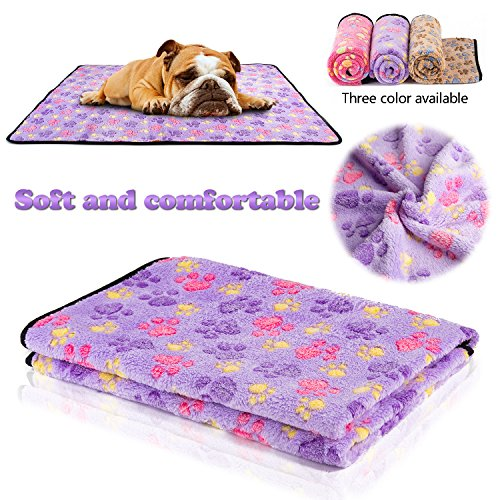iNNEXT Puppy Blanket Cushion Kitten