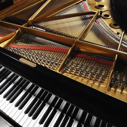 Moonlight Sonata - 3rd Movement (Sonata No. 14 C# (3rd Movement)
