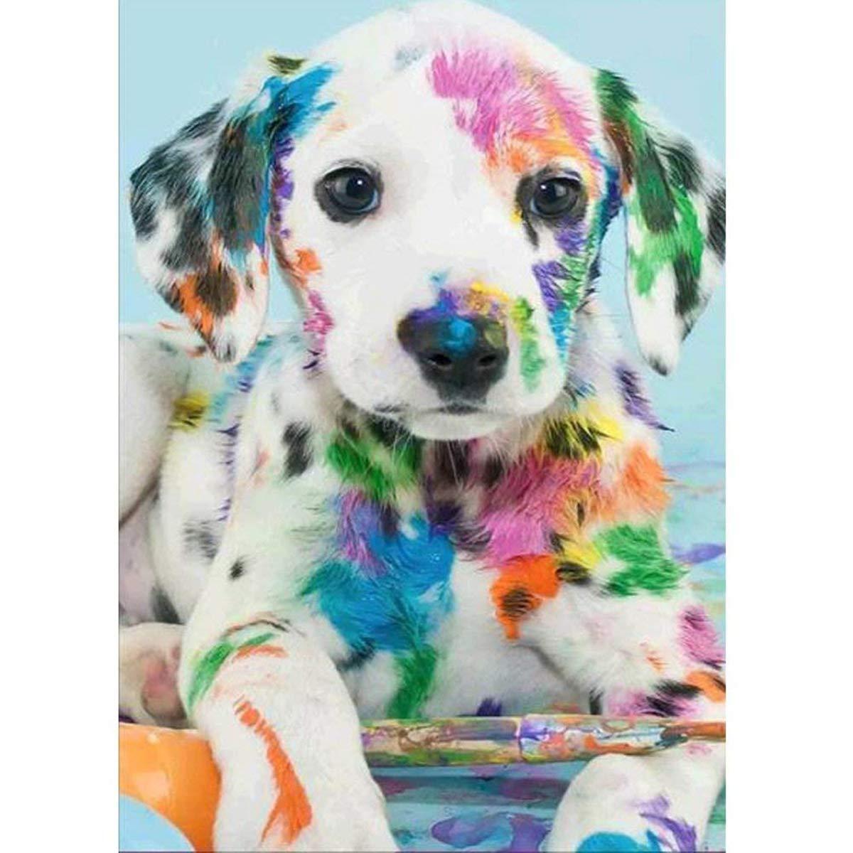 5d Pintura Por Diamantes (5162) Perro