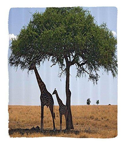 Tallest Trees Ever - Chaoran 1 Fleece Blanket on Amazon Super Silky Soft All Season Super Plush Safari Decor Collection Baby Mom Giraffe under the Tree the Tallest Animal Mammal inavannahs Nature Art Photo Fabric Extra