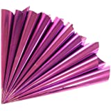 Empty Hand Rolled Mylar Cellophane Cones Applicator Dispenser for Henna Cake Decorating Art Craft 10 Pack