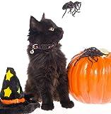 BINGPET Adjustable Halloween Breakaway Cat Collar