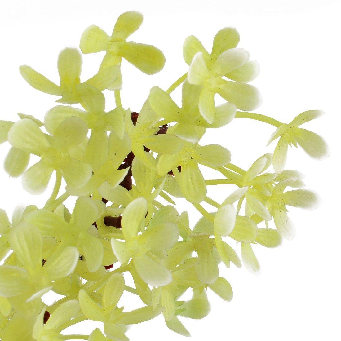 Amazon.com : eDealMax acuario de plástico Hoja de imitar Hierba Planta de algas Marinas Aquascape decoración 6pcs : Pet Supplies