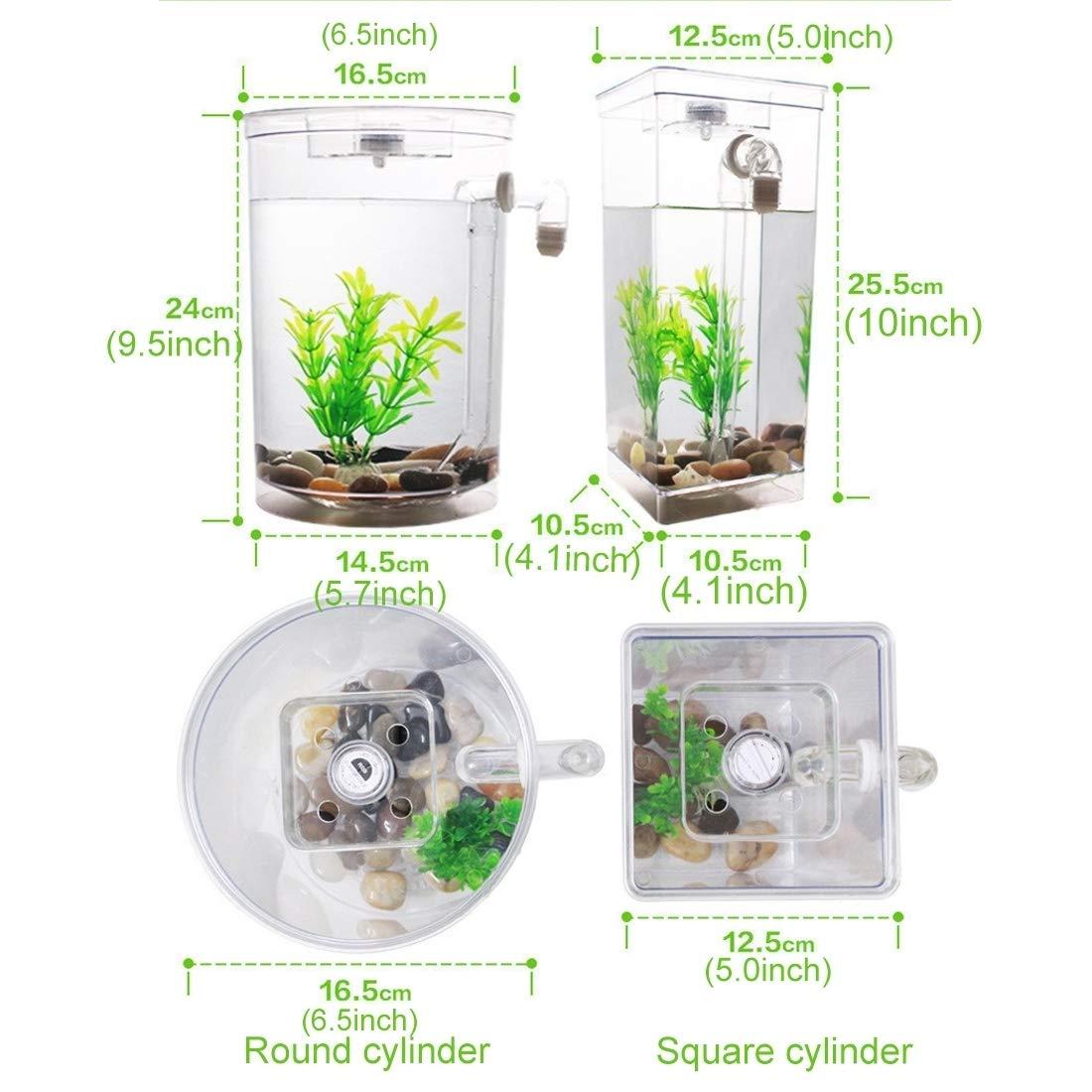 Casa perfecta Recipiente de plástico Creativo Ecológico de escritorio Mini acuario de oro Recipiente para peces, tanque de agua perezoso con adoquines, ...