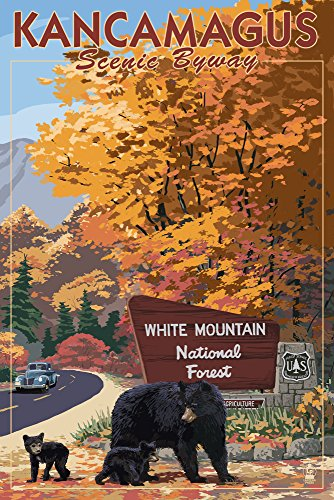 White Mountain National Forest, New Hampshire - Kancamagus Scenic Byway (9x12 Art Print, Wall Decor Travel Poster)