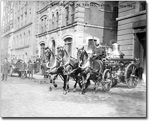 Classic Firefighter Horse Drawn Fire Engine 30x40 Silver Halide Photo Print