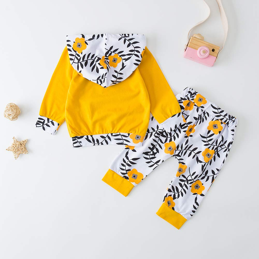Infant Toddler Baby Girl Clothes Long Sleeve T-Shirt Tops Pants Outfits Set