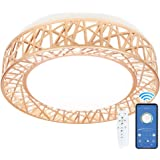 APP & Control remoto Luz de techo, regulable y temperatura de color ajustable LED de fijación, montaje empotrado, 24 W…