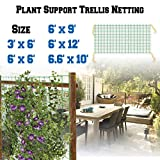 BenefitUSA Trellis Netting Plant Support Net for Climbing Plants Fruits Vine Vegetables Flowers and Veggie Garden Netting (6.6' x 10')