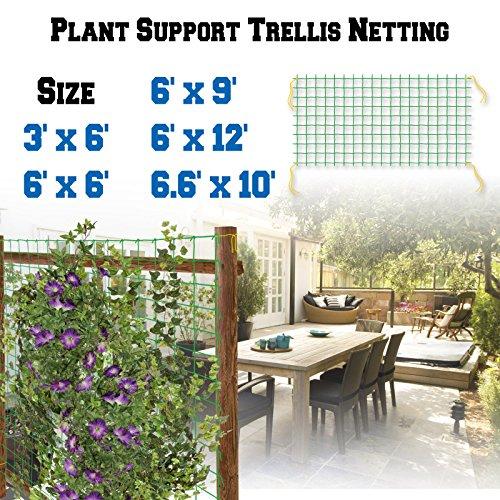 BenefitUSA Trellis Netting Plant Support Net for Climbing Plants Fruits Vine Vegetables Flowers and Veggie Garden Netting (6.6' x 10') by BenefitUSA