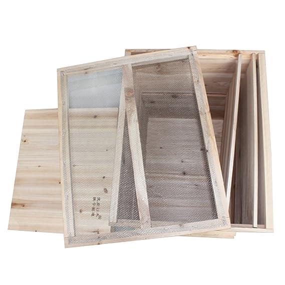 Material Para la Apicultura de Siete Cajas de Altas Colmenas: Amazon.es: Jardín